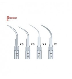 SCALER TIPS KIT (2XG1,G2,G4 AND P1)