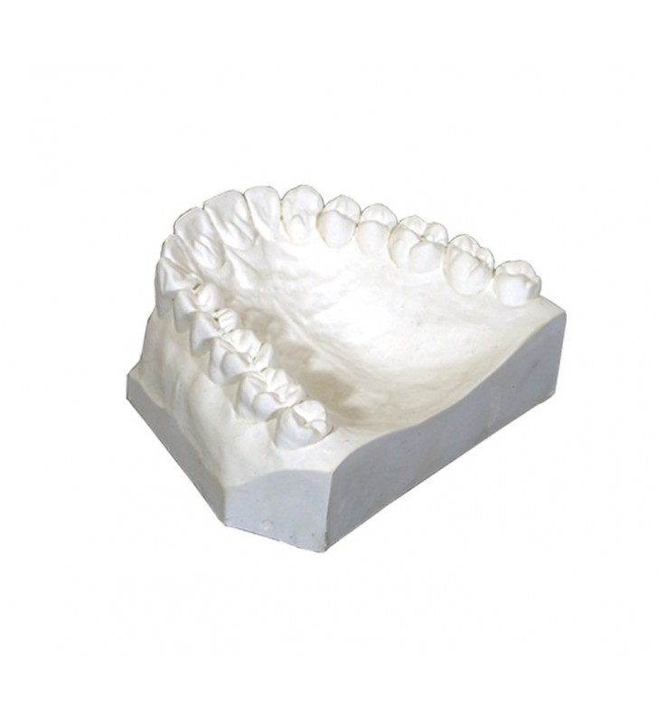 ORTHO PLASTER (50LB)Ultra-White
